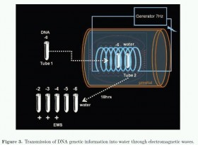 DNA waves and water - PsicoNeuroEndocrinoImmunologia